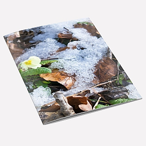 New Primrose A6 Notebook