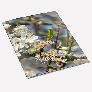 view Hawthorn A6 Notebook details