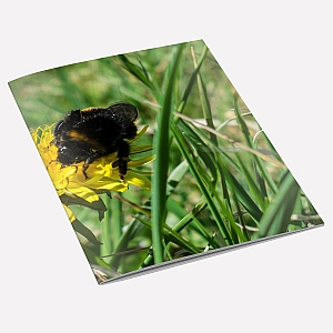 view Bumblebee A6 Notebook details