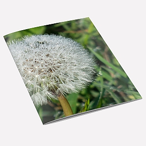 view Dandelion Dew Notebook details