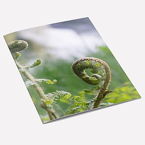 Fern Notebook A6