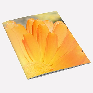 Marigold Notebook