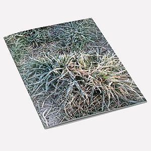 view Frosty Grass A6 Notebook details