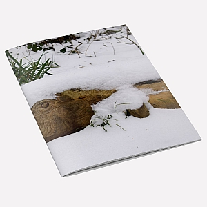 view Snow Fish A6 Notebook details