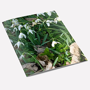 view Snowdrops A6 Notebook details