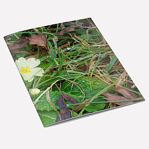 view Wild Primrose A6 Notebook details
